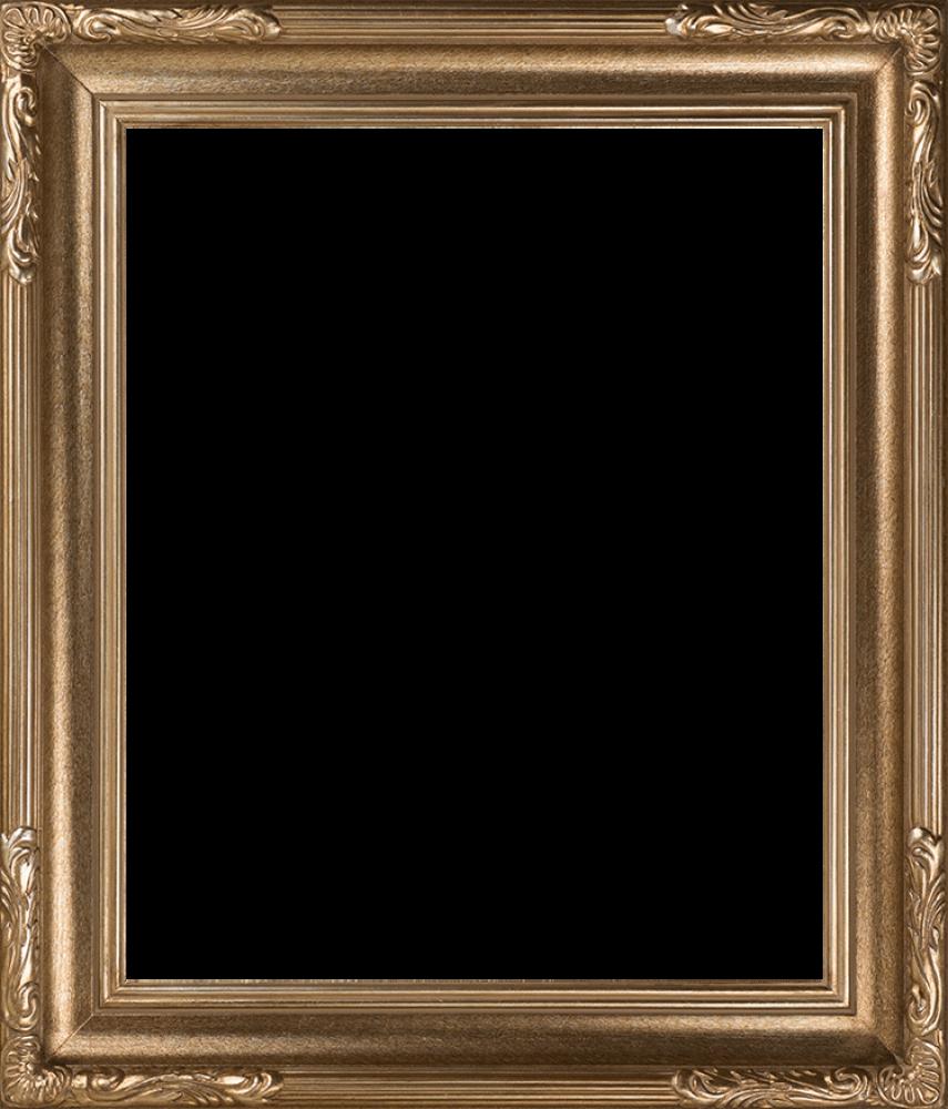 """Florentine Dark Champagne Frame 20""""X24"""""""