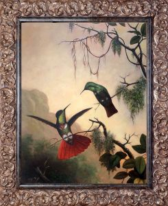 Two Hooded Visorbearer Hummingbirds Pre-Framed