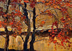 Autumn (tree) - 36