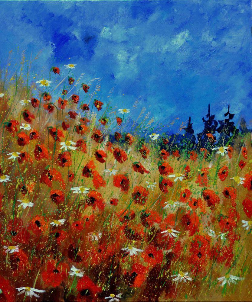 Poppies 672121