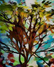 Autumn Colors 2