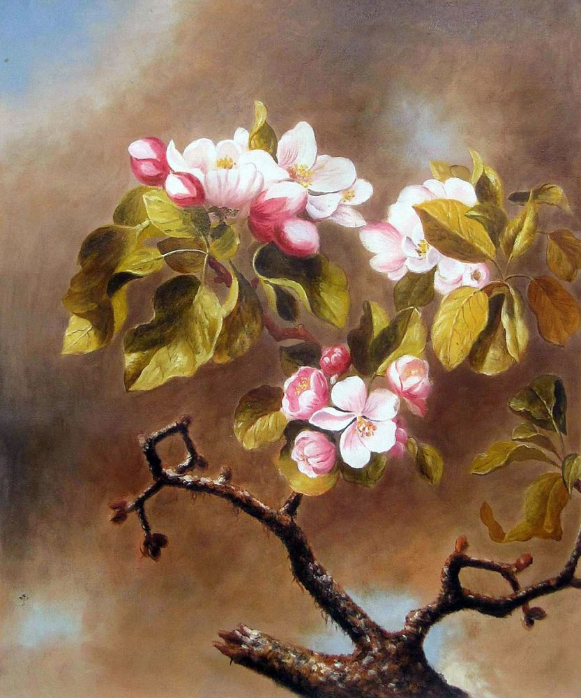 Branch of Apple Blossoms Against Cloudy Sky