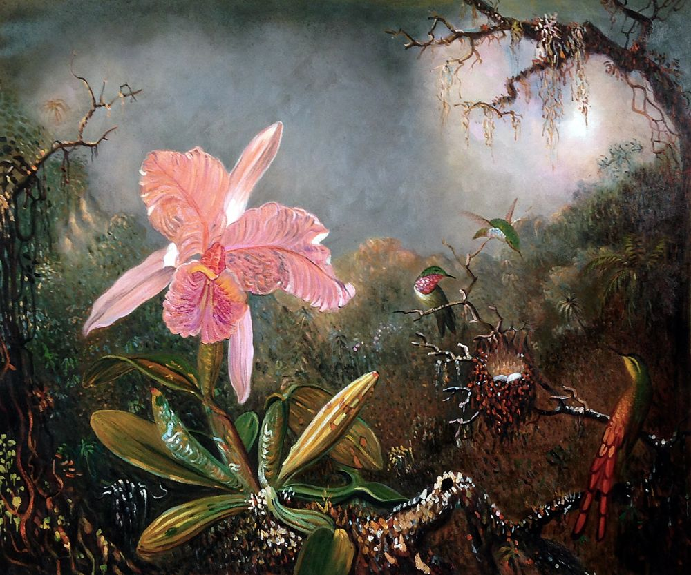 Cattleya Orchid and Three Hummingbirds, 1871
