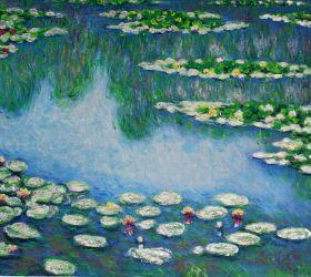 Water Lilies (Luxury Line)