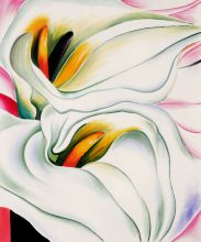 Two Calla Lillies On Pink, 1928