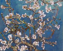 Branches of an Almond Tree in Blossom - 10
