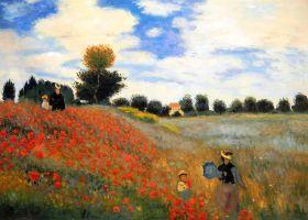 Poppy Field in Argenteuil - 36