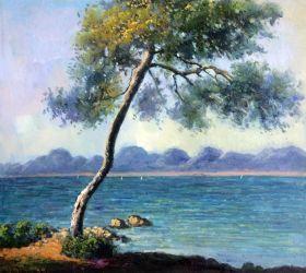 Cap d' Antibes