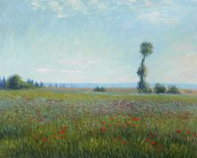 The Fields of Poppies - 24