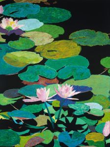 Blairs Magical Pond