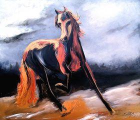 Copper Arabian