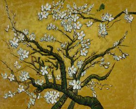 Branches of an Almond Tree in Blossom, Citrine Yellow