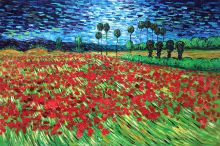 Field of Poppies - 36