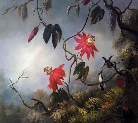 Passion Flowers with Hummingbirds, 1893