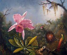 Cattleya Orchid and Three Hummingbirds, 1871 - 24