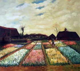 Bulb Fields, 1883 - 24