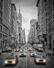 5th Avenue NYC Yellow Cabs