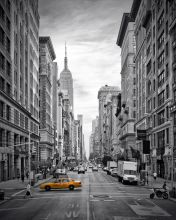 5th Avenue Yellow Cab