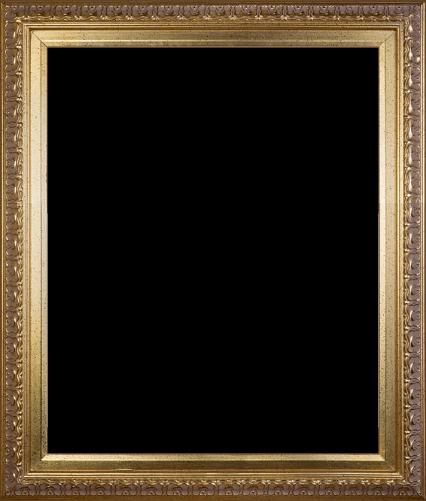 """Elegant Gold Frame 20""""X24"""""""