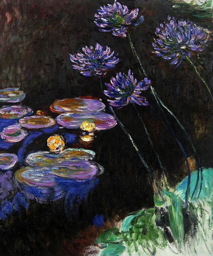 Water Lilies and Agapanthus