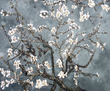 Branches Of An Almond Tree In Blossom (Artist Interpretation in Pearl Grey) - 24