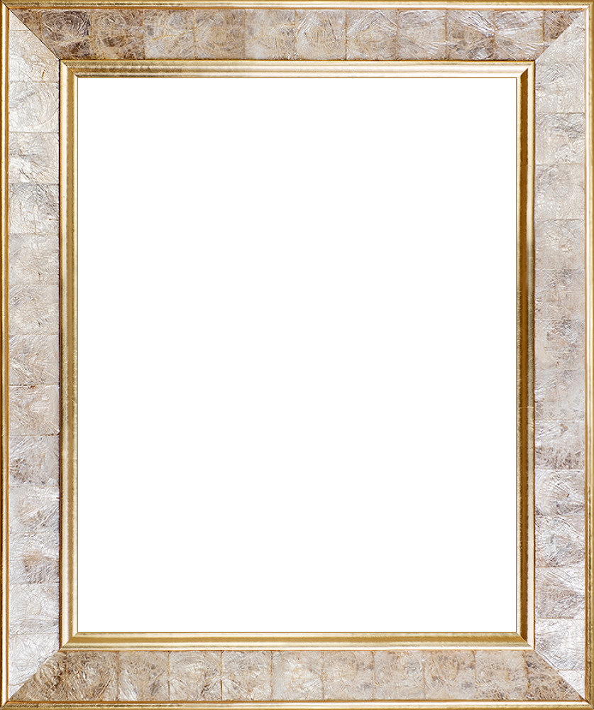 """Gold Pearl Frame 16"""" X 20"""""""