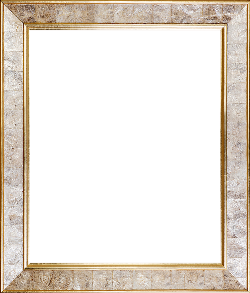 "Gold Pearl Frame 20"" X 24"""