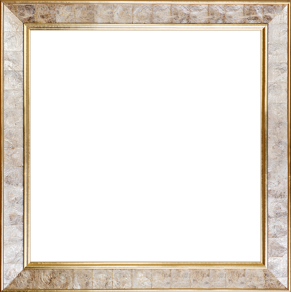 "Gold Pearl Frame 24"" X 24"""