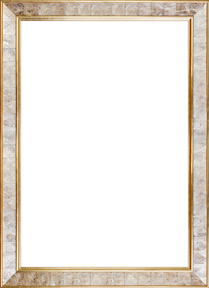 "Gold Pearl Frame 24"" X 36"""