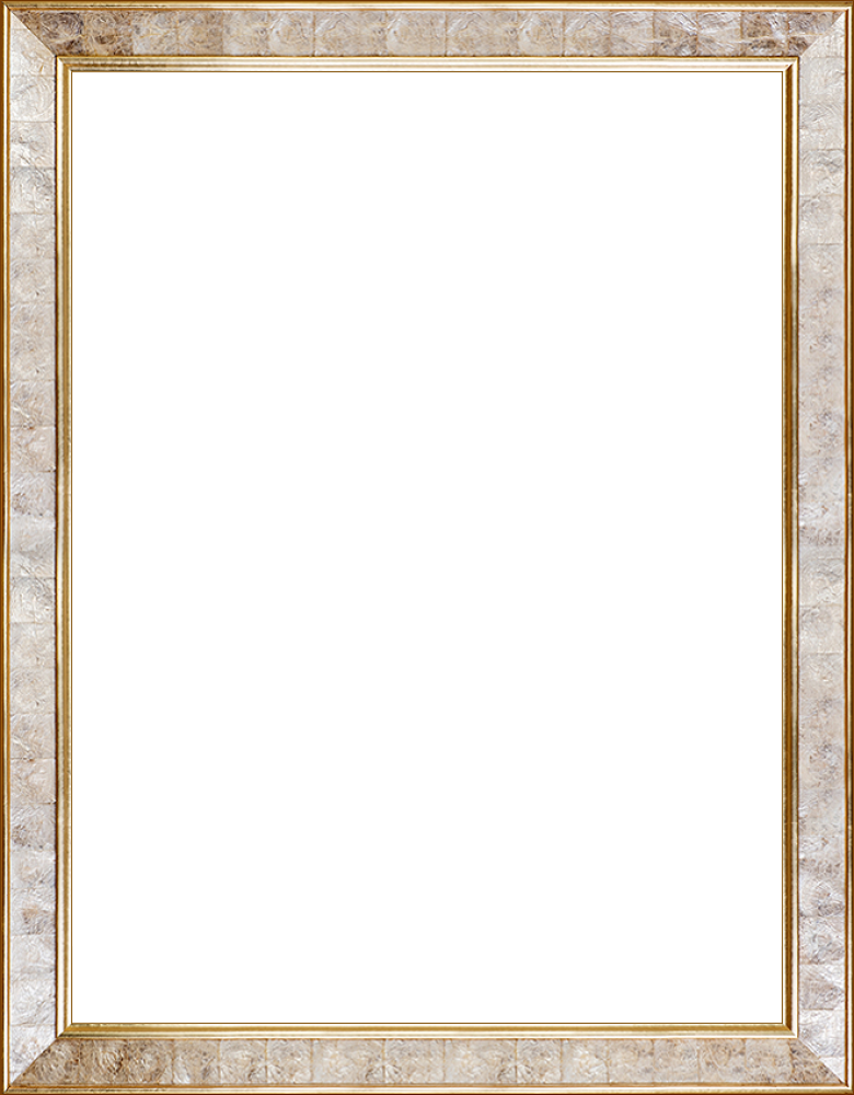 """Gold Pearl Frame 30"""" X 40"""""""