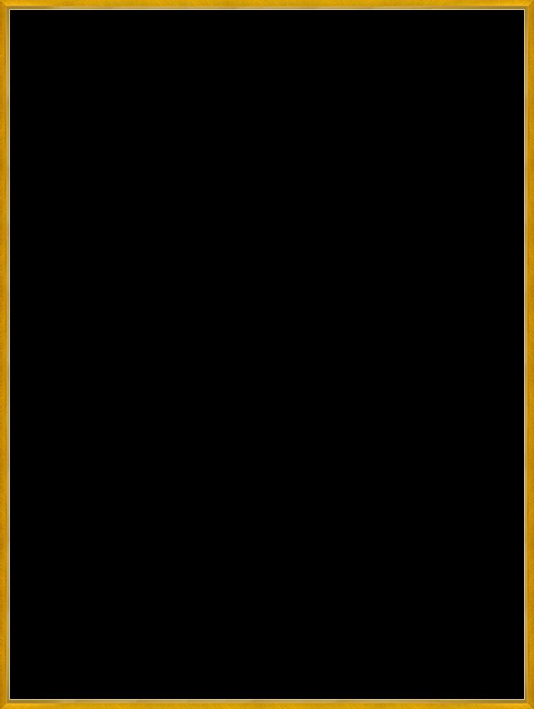 "Studio Gold Bullion Frame 30""X40"""