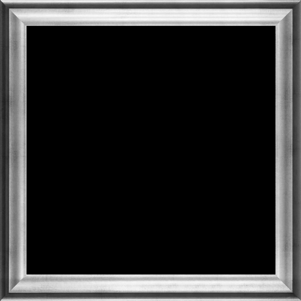 """Athenian Silver Frame 24""""X24"""""""