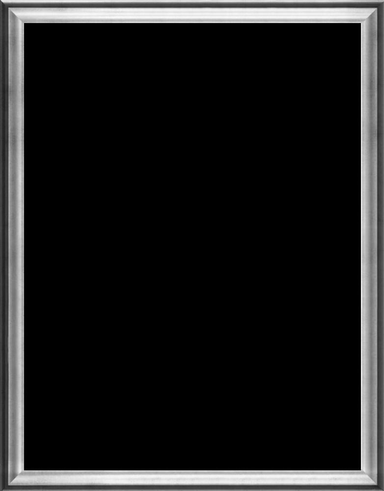 """Athenian Silver Frame 36""""X48"""""""