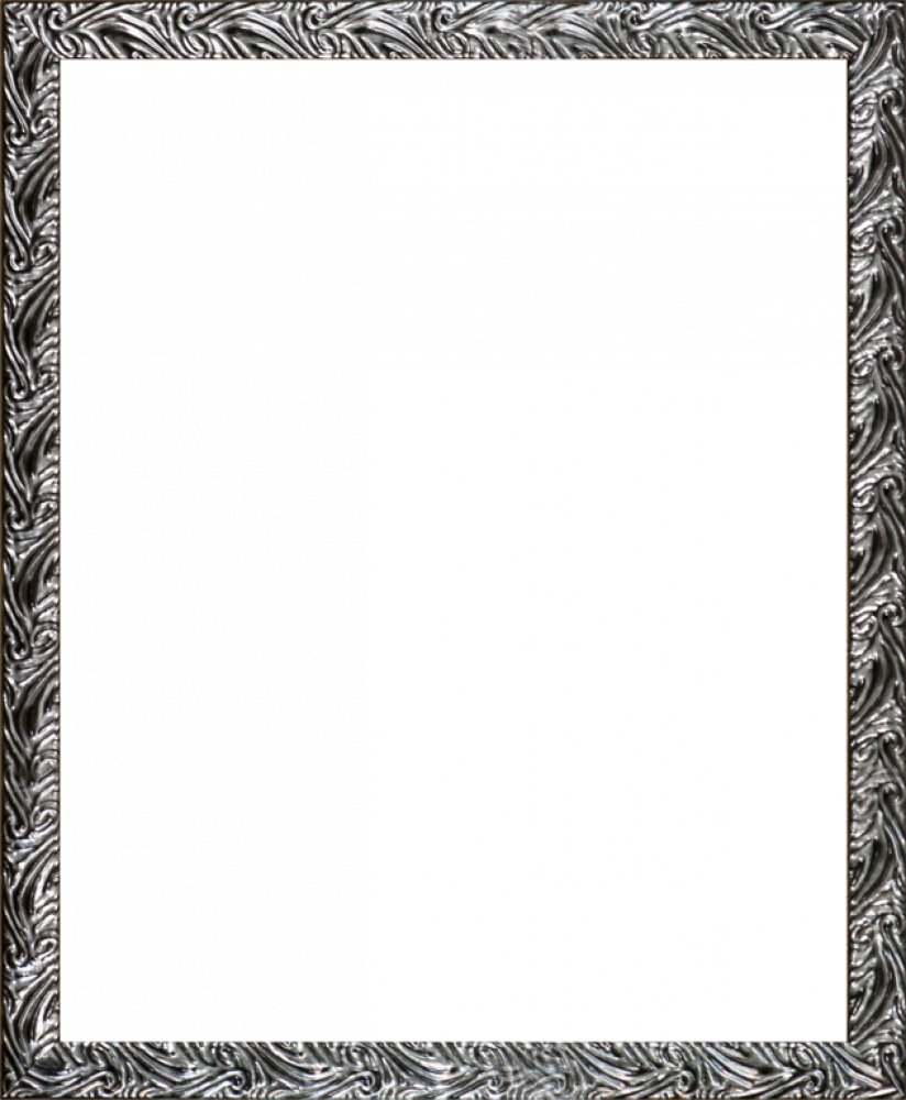 Ornate Silver Frame 16