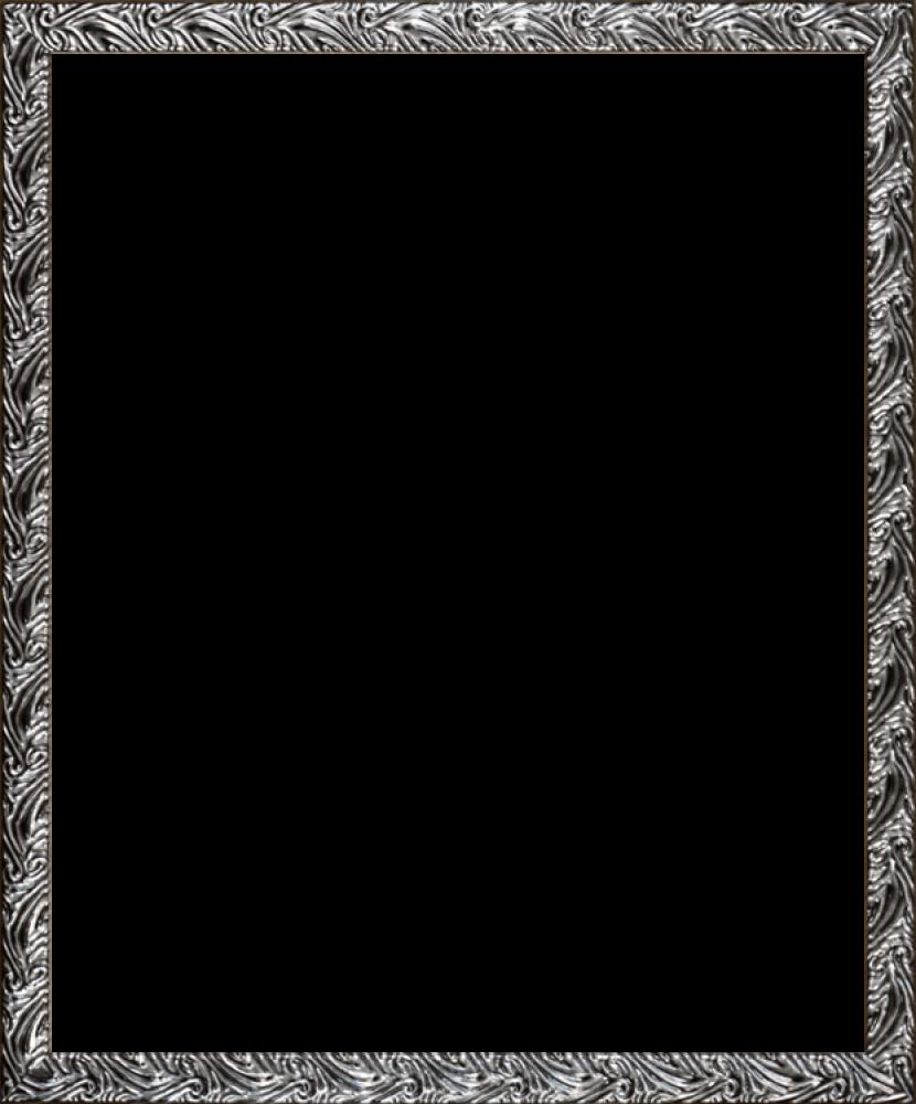 Ornate Silver Frame 20