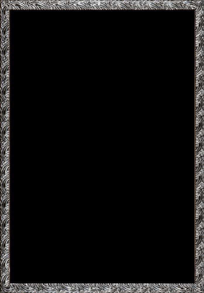 Ornate Silver Frame 24