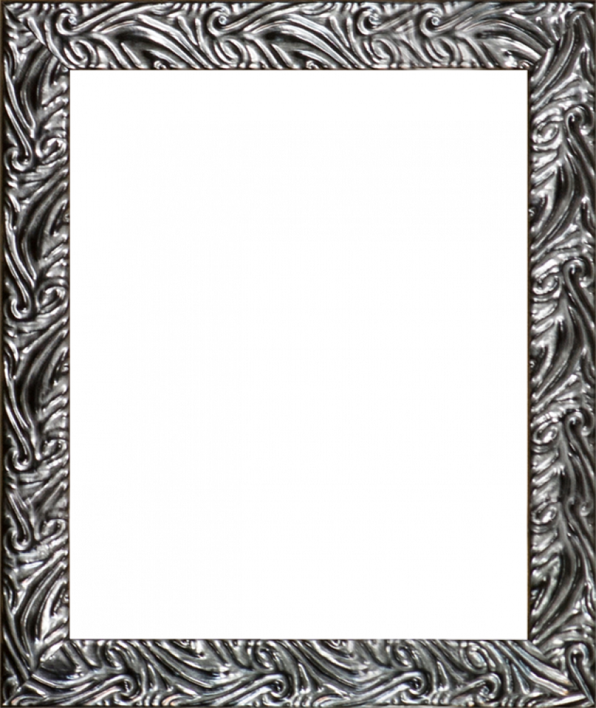Ornate Silver Frame 8