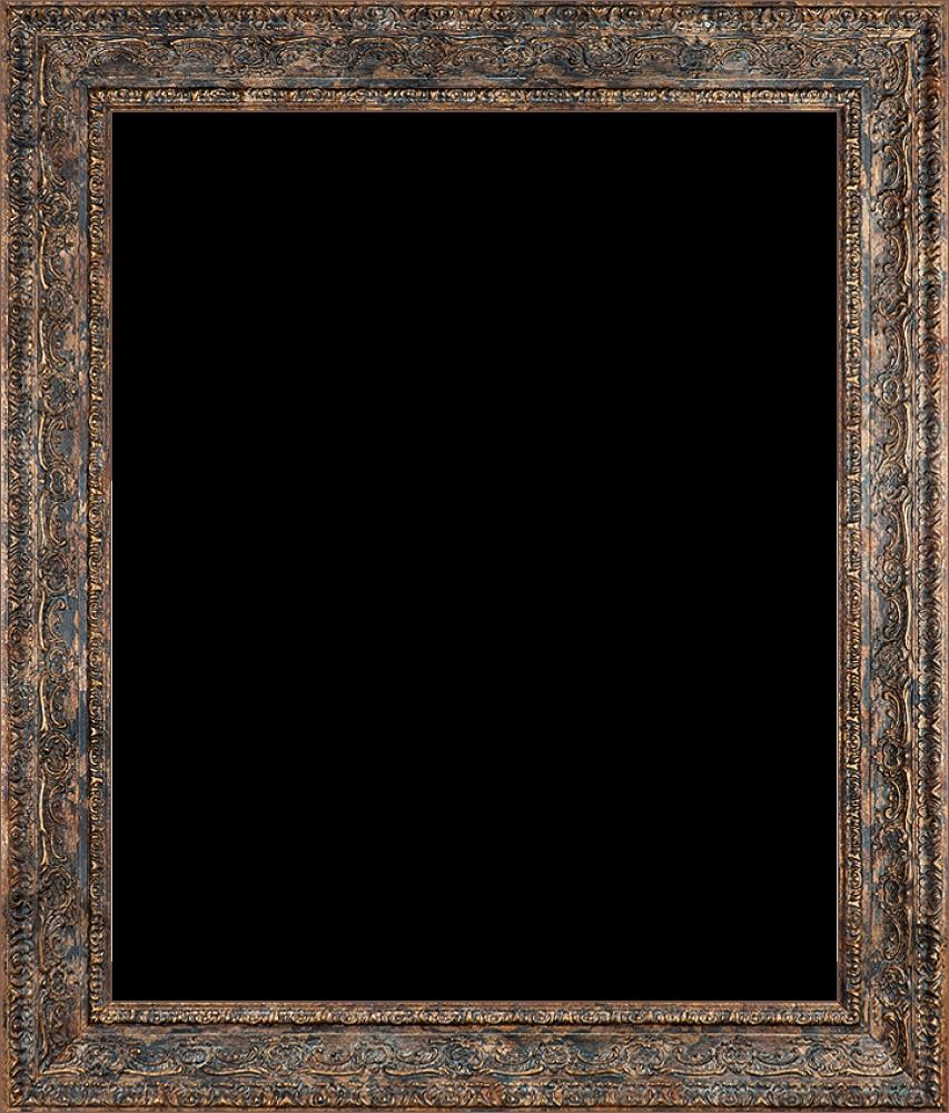 "Parisian Tortoise Frame 20""X24"""
