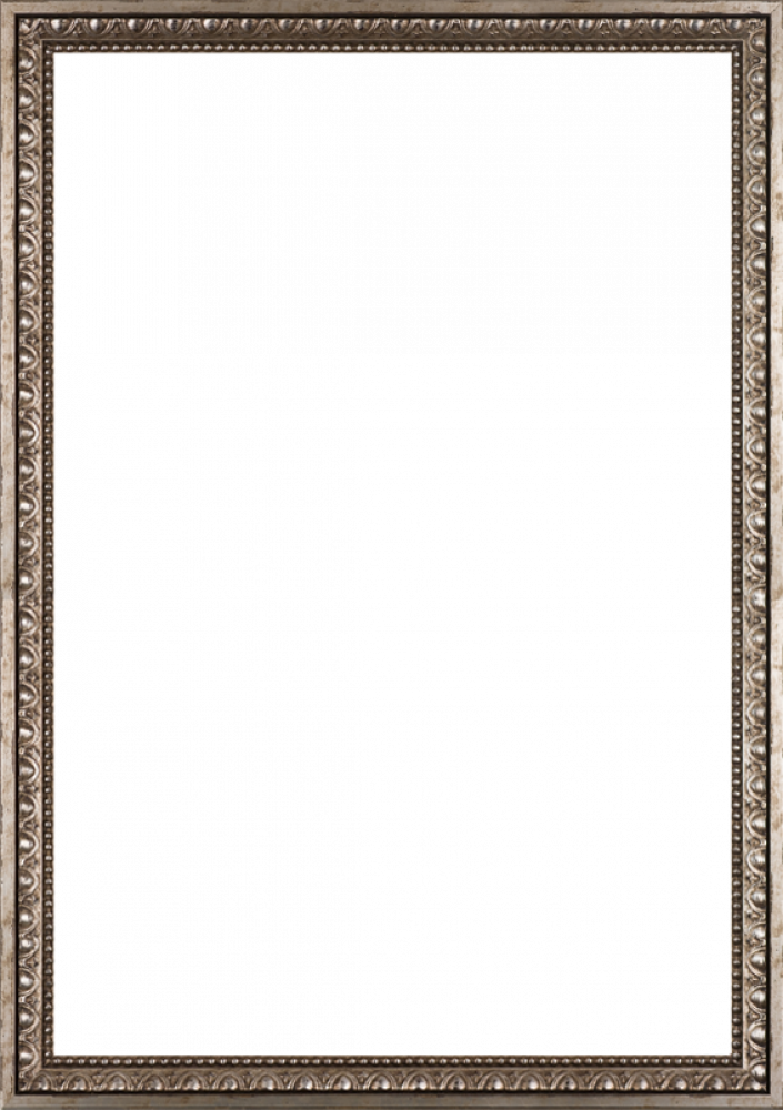 "Versailles Silver Frame 24"" X 36"""