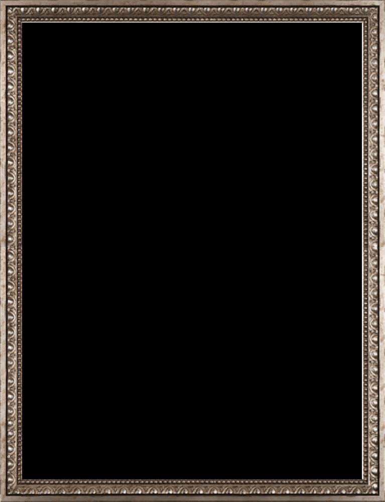 "Versailles Silver Frame 30"" X 40"""