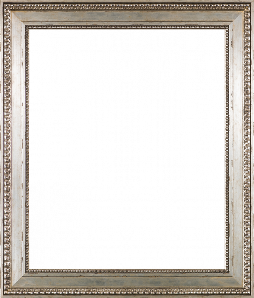 Versailles Silver King Frame 20