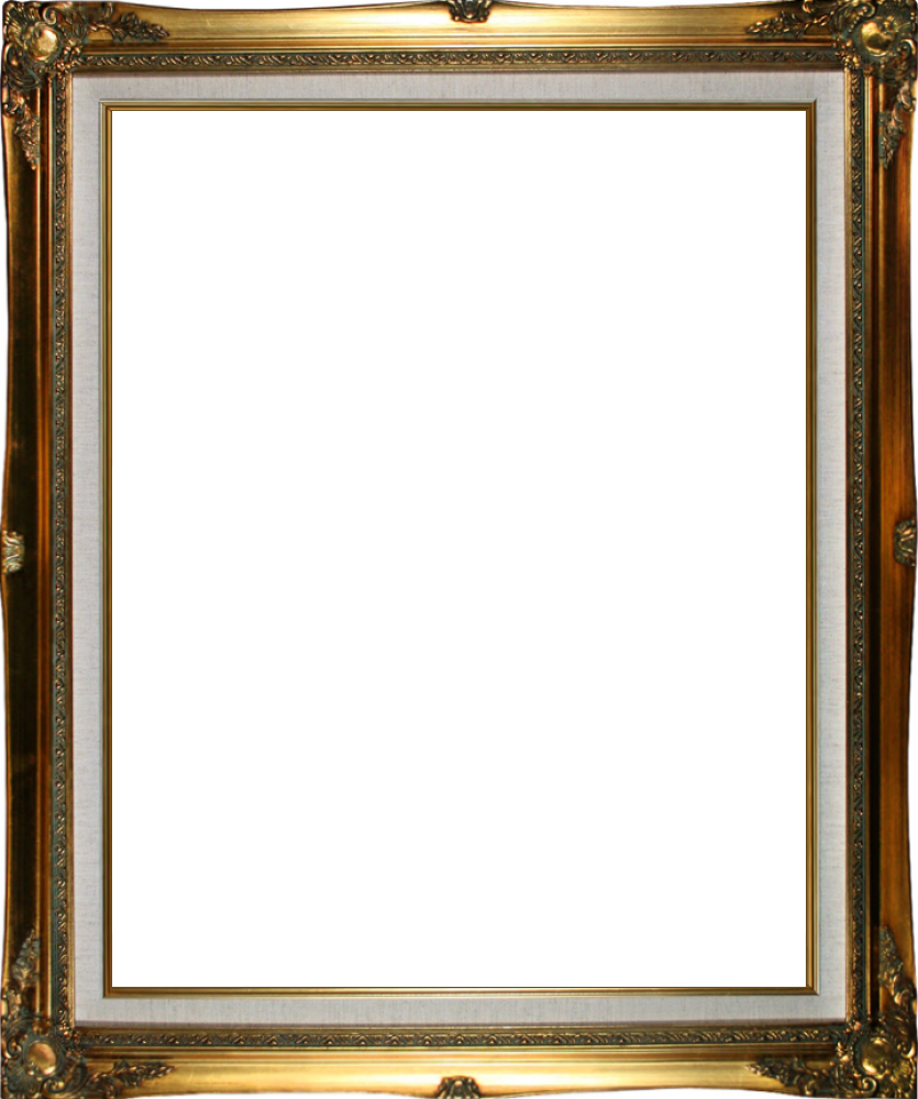 "Legacy Gold Frame 16""X20"""