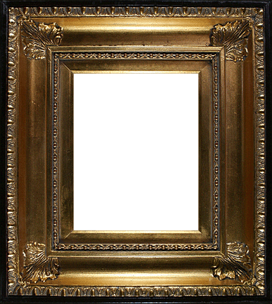 "Regency Gold Frames 8""X10"""