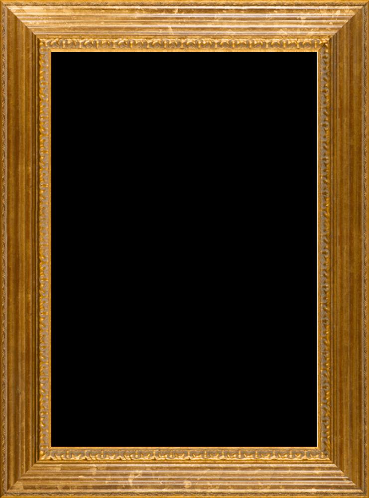 """Vienna Gold Leaf Frame 24""""X36"""""""