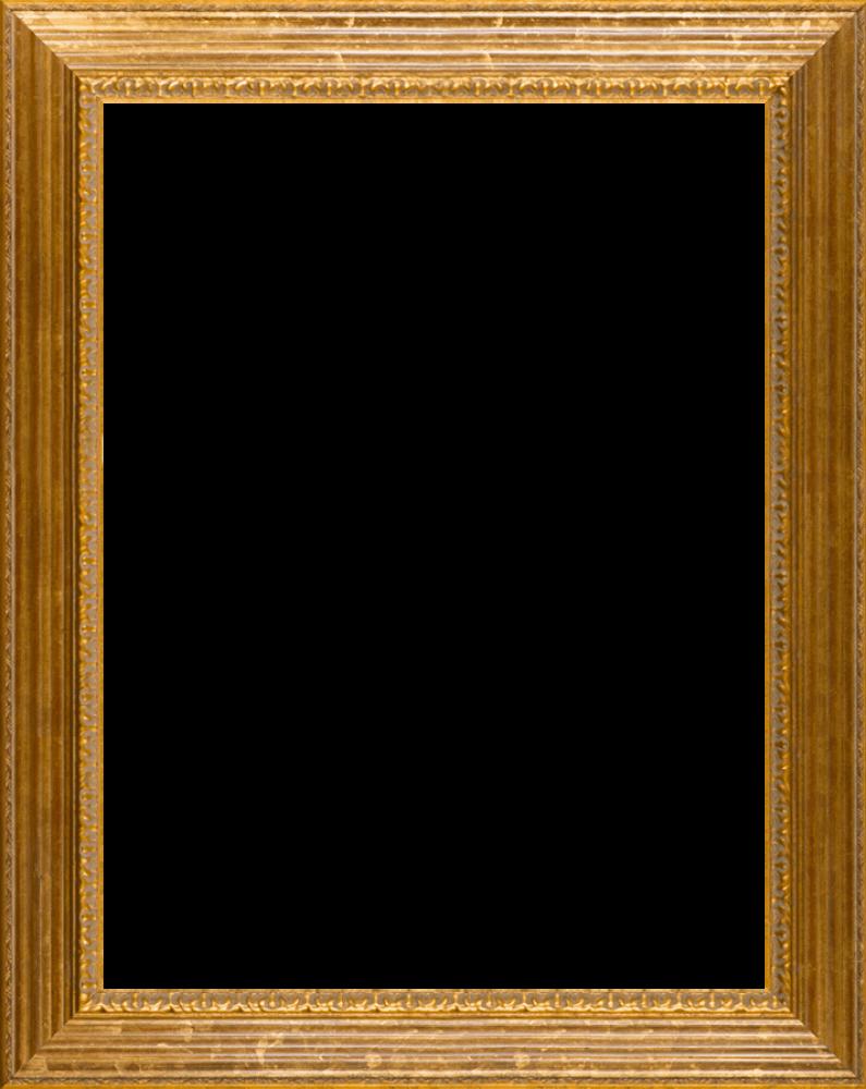 """Vienna Gold Leaf Frame 30""""X40"""""""