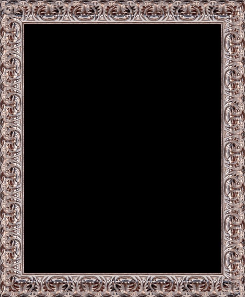 Silver Oak Leaf Frame 16