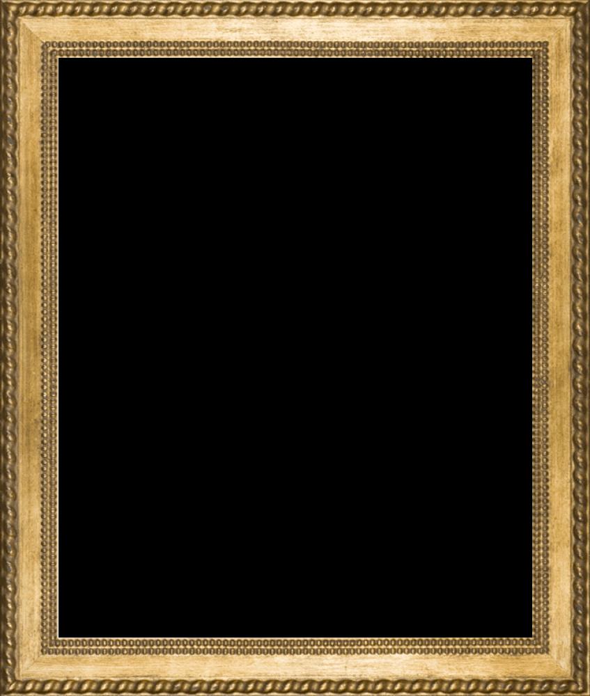 "Verona Gold Braid Frame 20""X24"""