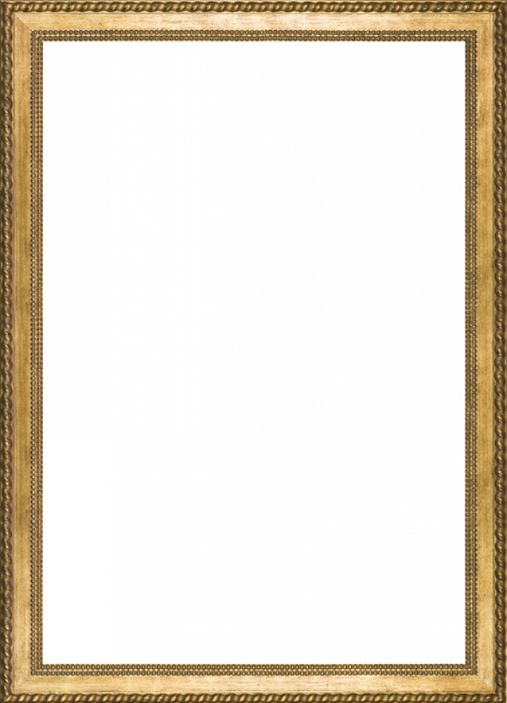 "Verona Gold Braid  Frame 24""X36"""