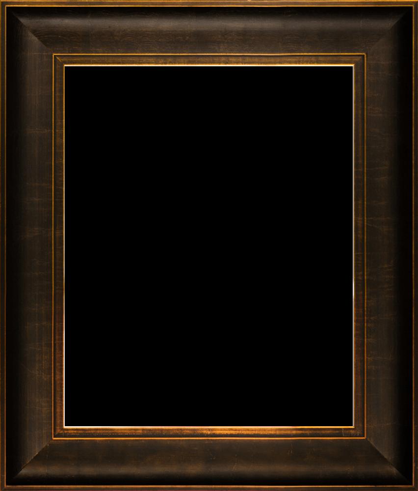 """Veine D'Or Bronze Scoop Frame 16""""X20"""""""