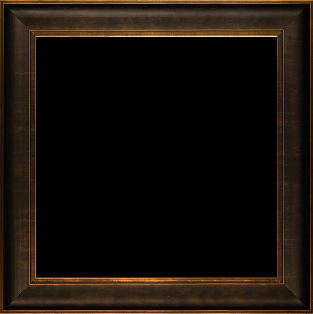 """Veine D'Or Bronze Scoop Frame 24""""X24"""""""